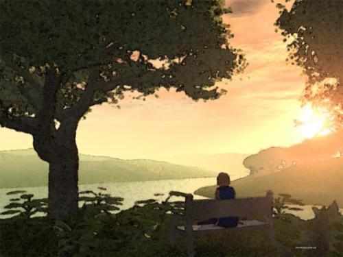 calm-sunday-evening-vahid-lancaster