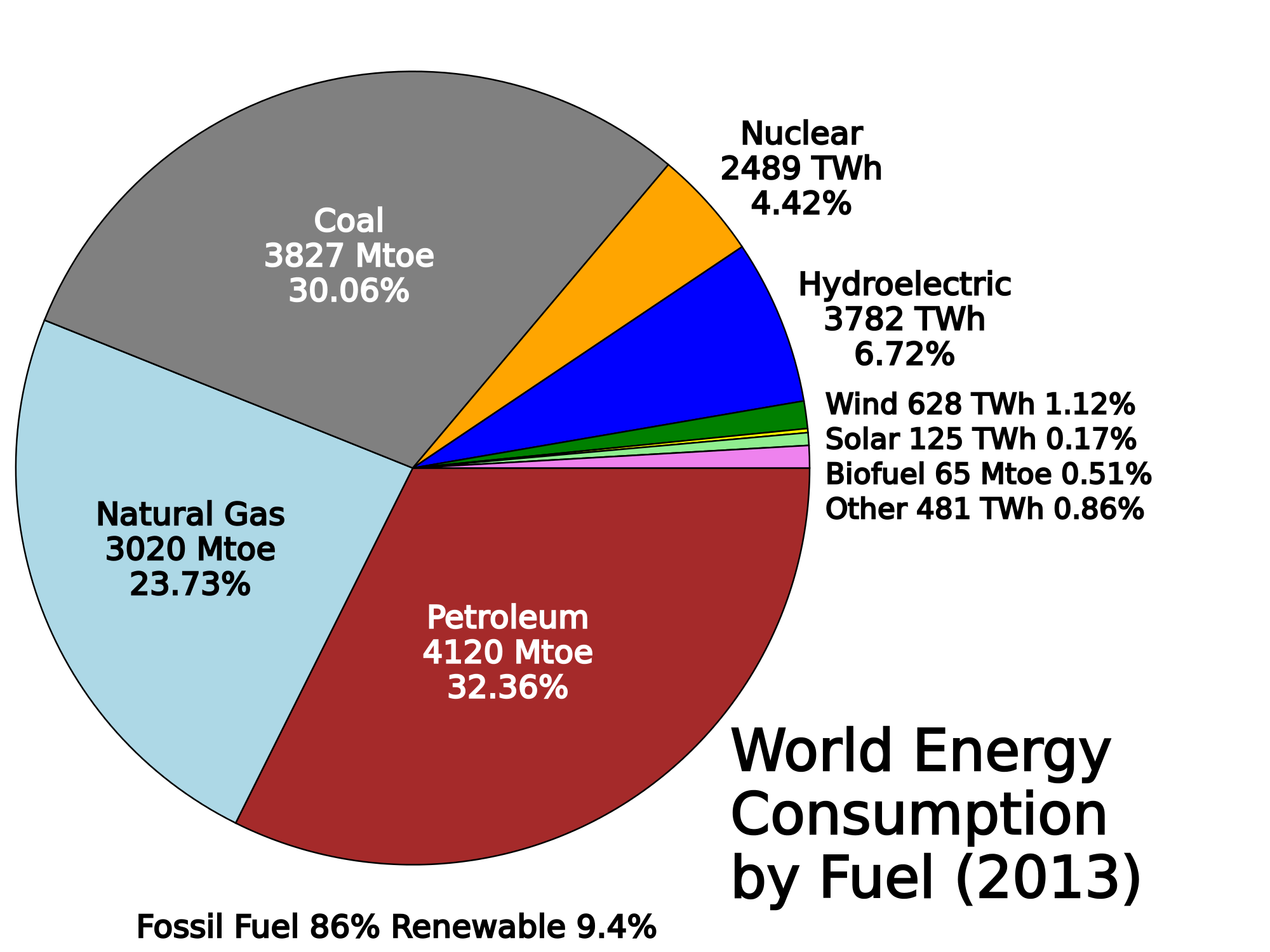 world energy consumption essay Consider this: total world energy consumption today averages 15 terawatts a year global wind energy potential alone is estimated to be 72 terawatts.