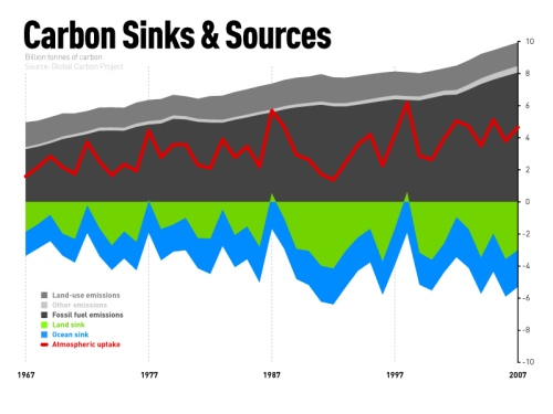 Carbon Sinks and Sources