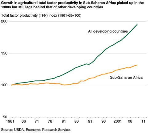 sub saharan africa agricultural productivity