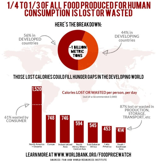 world-bank-food-infographic-2014-food-waste-statistics