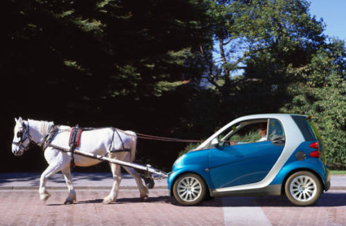 horse-pulling-smart-car-shopped-or-not.img_assist_custom