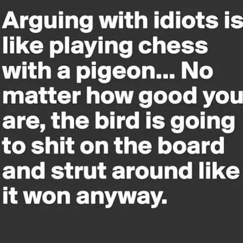 Arguing with idiots is like playing chess with